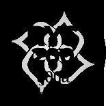 RYS Yoga Alliance