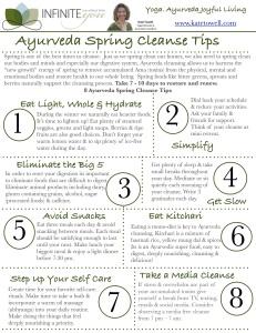Spring Cleanse tipsheet